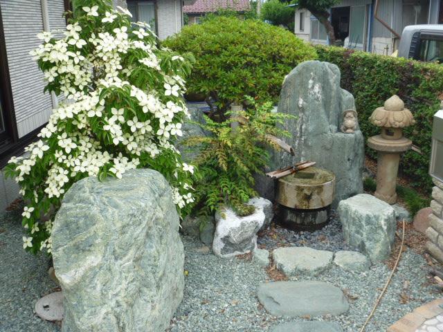 高崎メダカ園の庭園