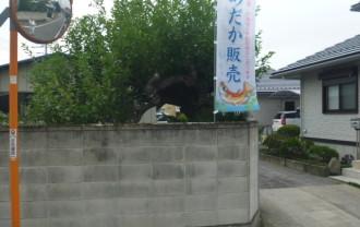 高崎メダカ園の入り口の旗