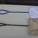 メダカをすくうア網